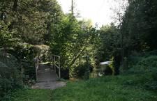 Nature -Quévy