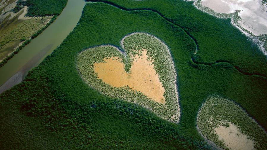 Cœur de Voh en 1990, Nouvelle-Calédonie, France © Y.Arthus-Bertrand