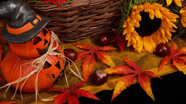 Les festivités d'Halloween