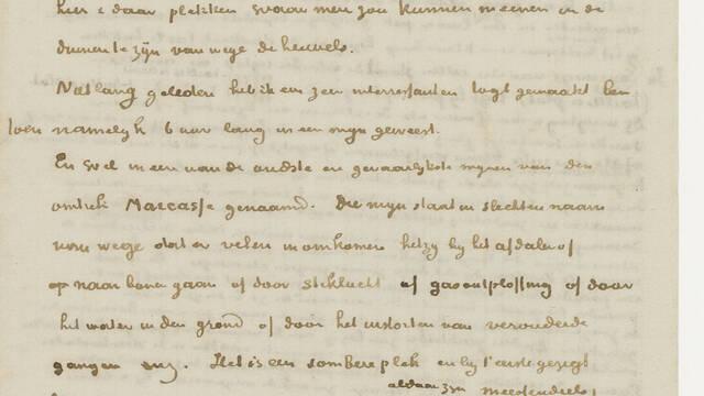 Retranscription d'une lettre à son frère Théo (avril 1879)