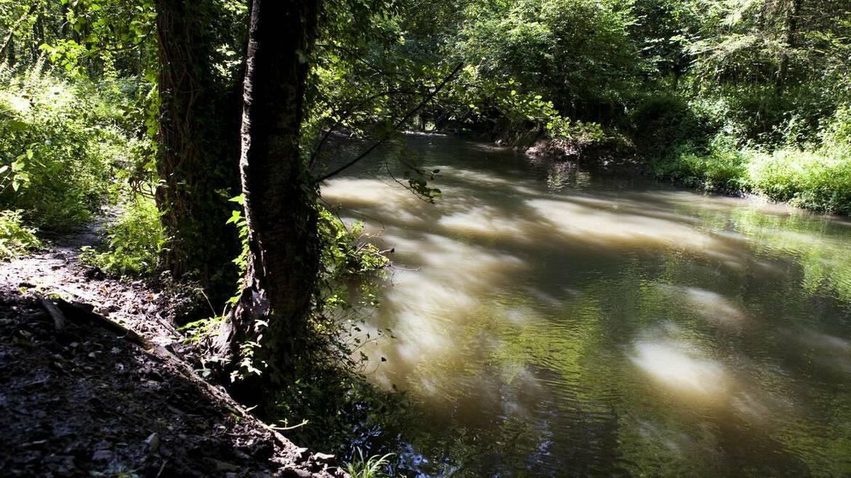 Honnelles, une commune où l'eau coule à flots