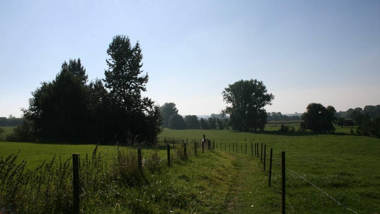 Les paysages verts du Borinage