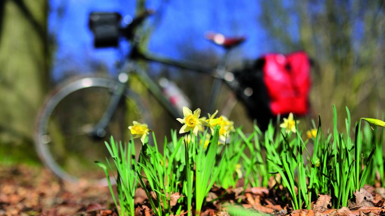 Nos parcours à vélo !